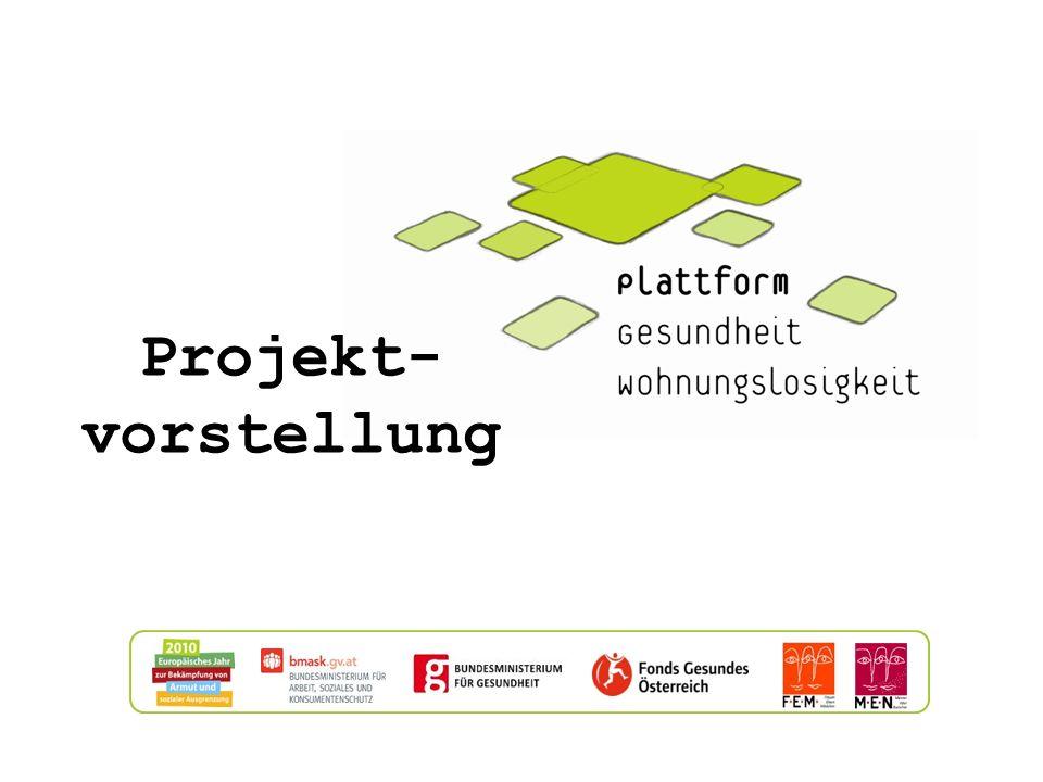 Projekt- vorstellung