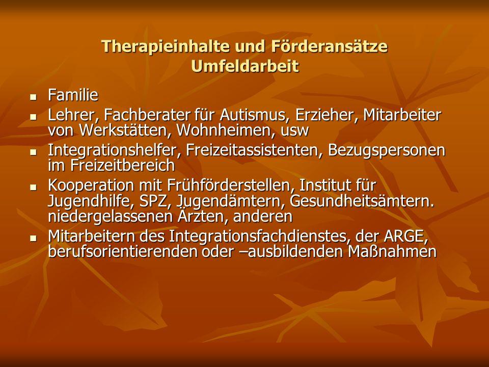 Therapieinhalte und Förderansätze Umfeldarbeit