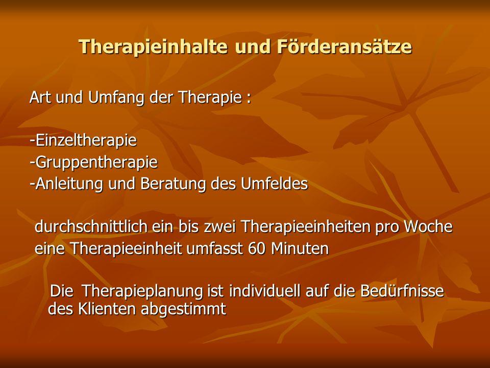 Therapieinhalte und Förderansätze
