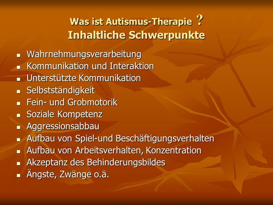 Was ist Autismus-Therapie Inhaltliche Schwerpunkte
