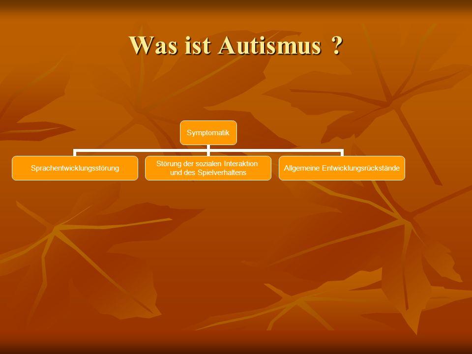 Was ist Autismus