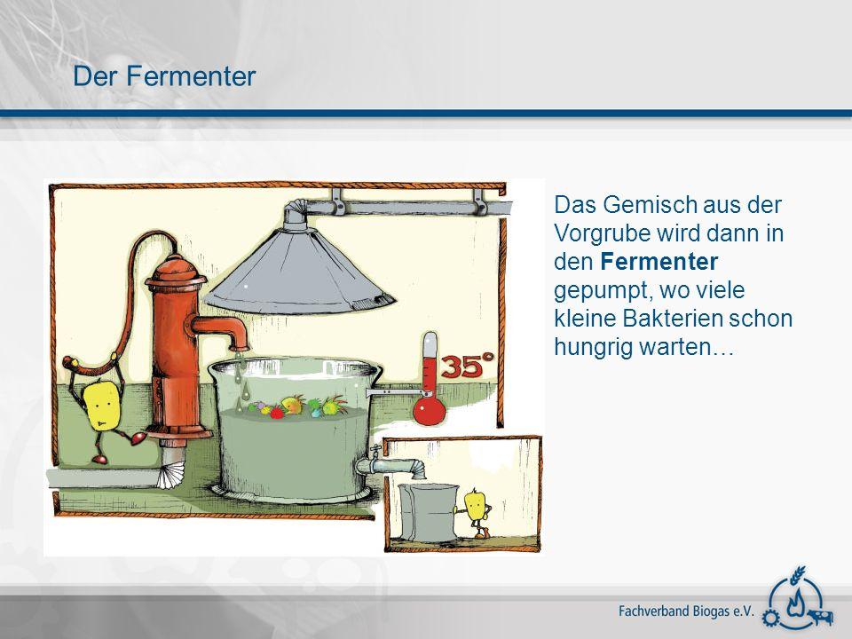 Der Fermenter Das Gemisch aus der Vorgrube wird dann in den Fermenter gepumpt, wo viele kleine Bakterien schon hungrig warten…