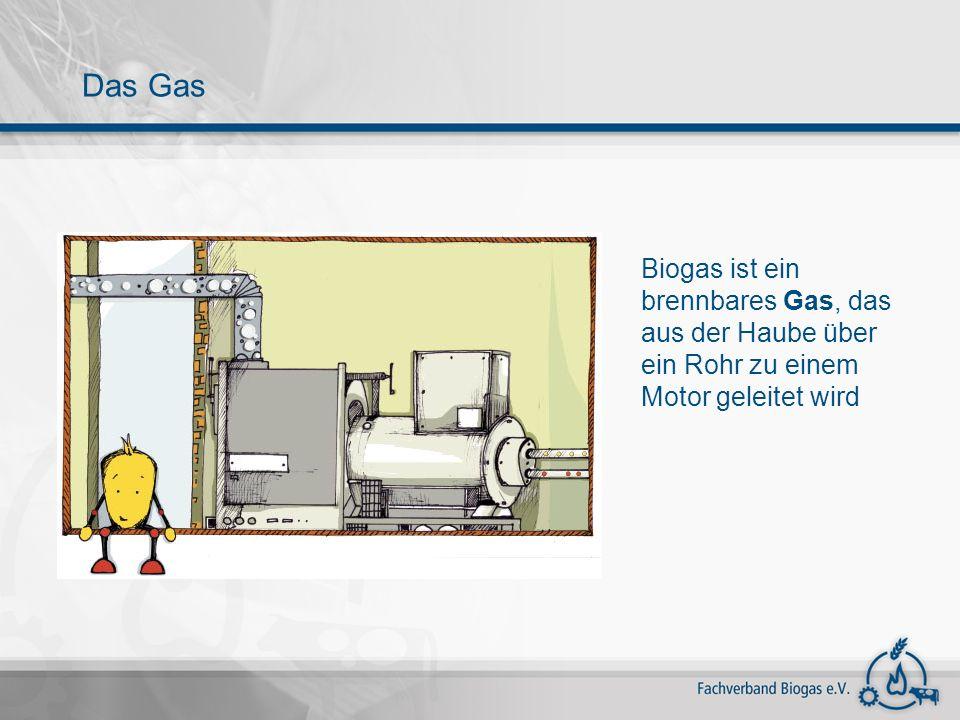 Das Gas Biogas ist ein brennbares Gas, das aus der Haube über ein Rohr zu einem Motor geleitet wird