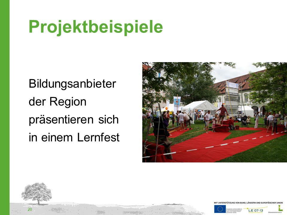 Projektbeispiele Bildungsanbieter der Region präsentieren sich in einem Lernfest