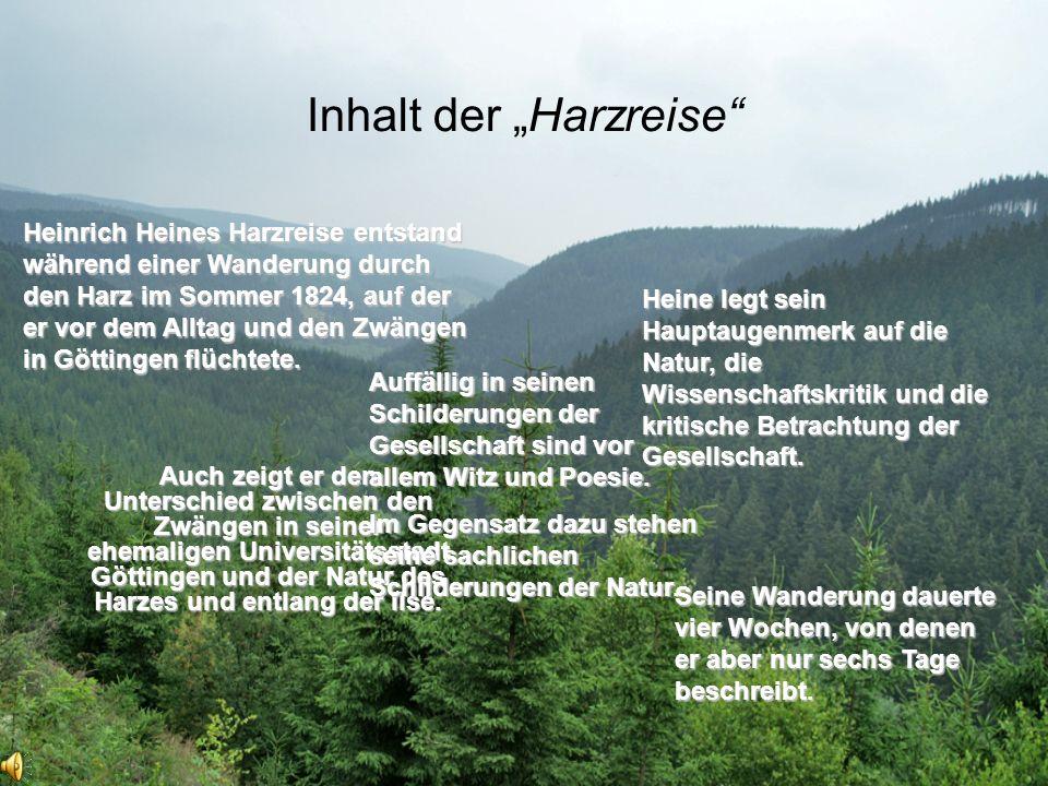 """Inhalt der """"Harzreise"""