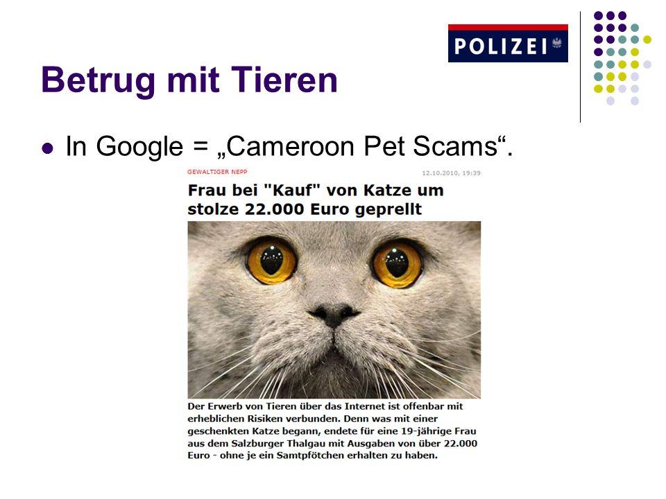 """Betrug mit Tieren In Google = """"Cameroon Pet Scams ."""