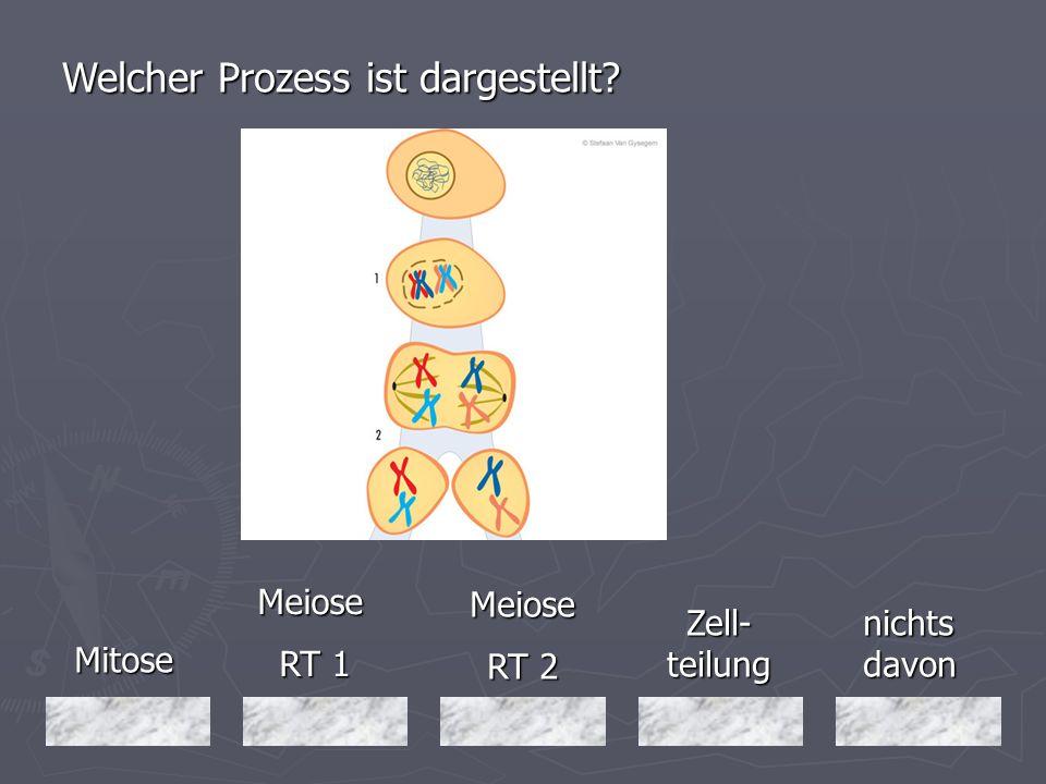 Welcher Prozess ist dargestellt