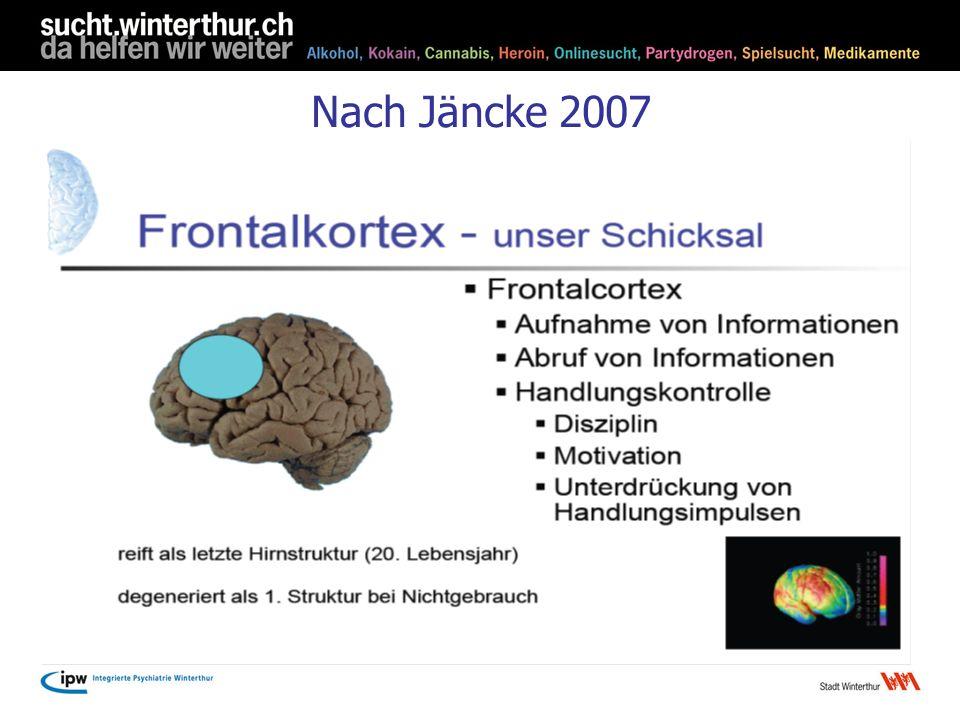 Nach Jäncke 2007