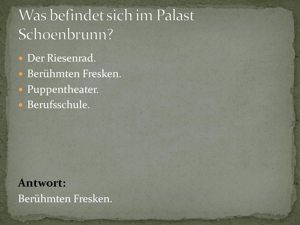 Was befindet sich im Palast Schoenbrunn