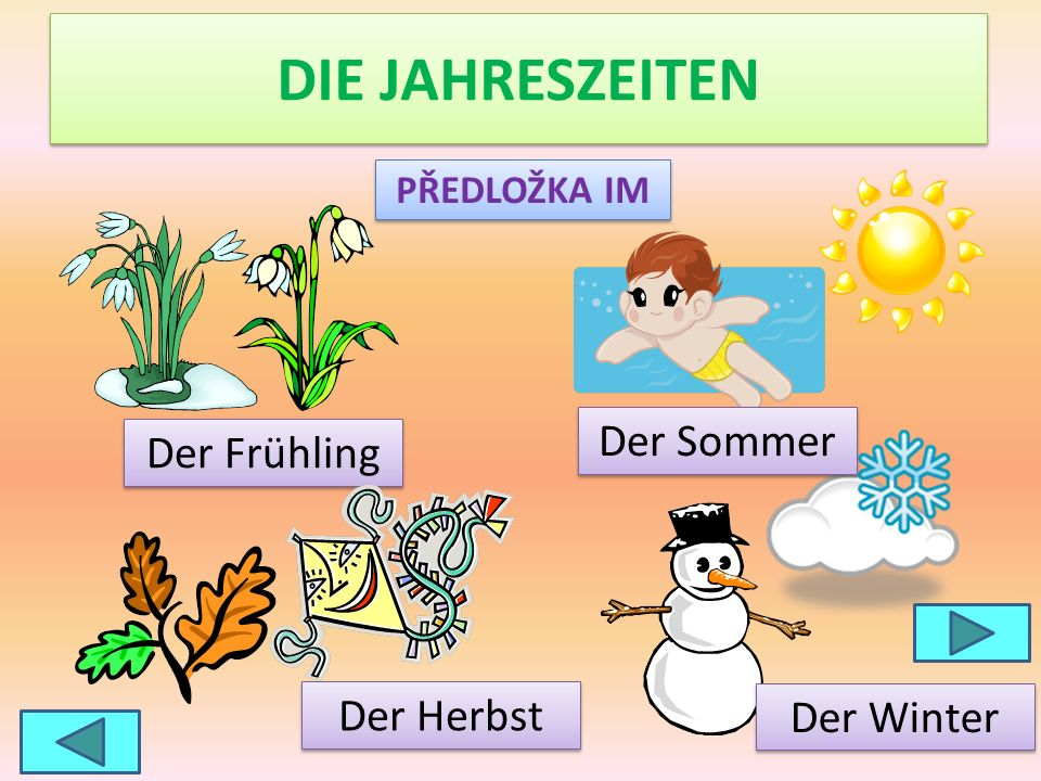 DIE JAHRESZEITEN Der Sommer Der Frühling Der Herbst Der Winter