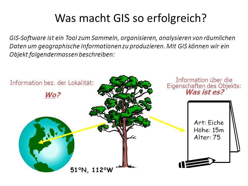 Was macht GIS so erfolgreich