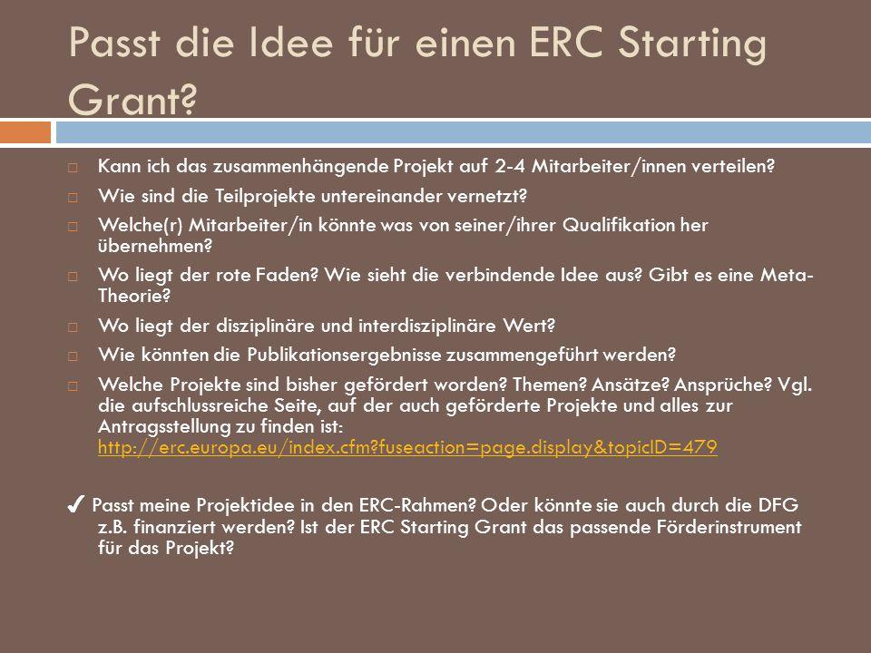 Passt die Idee für einen ERC Starting Grant