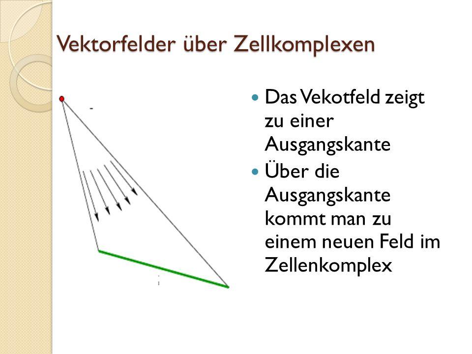 Vektorfelder über Zellkomplexen