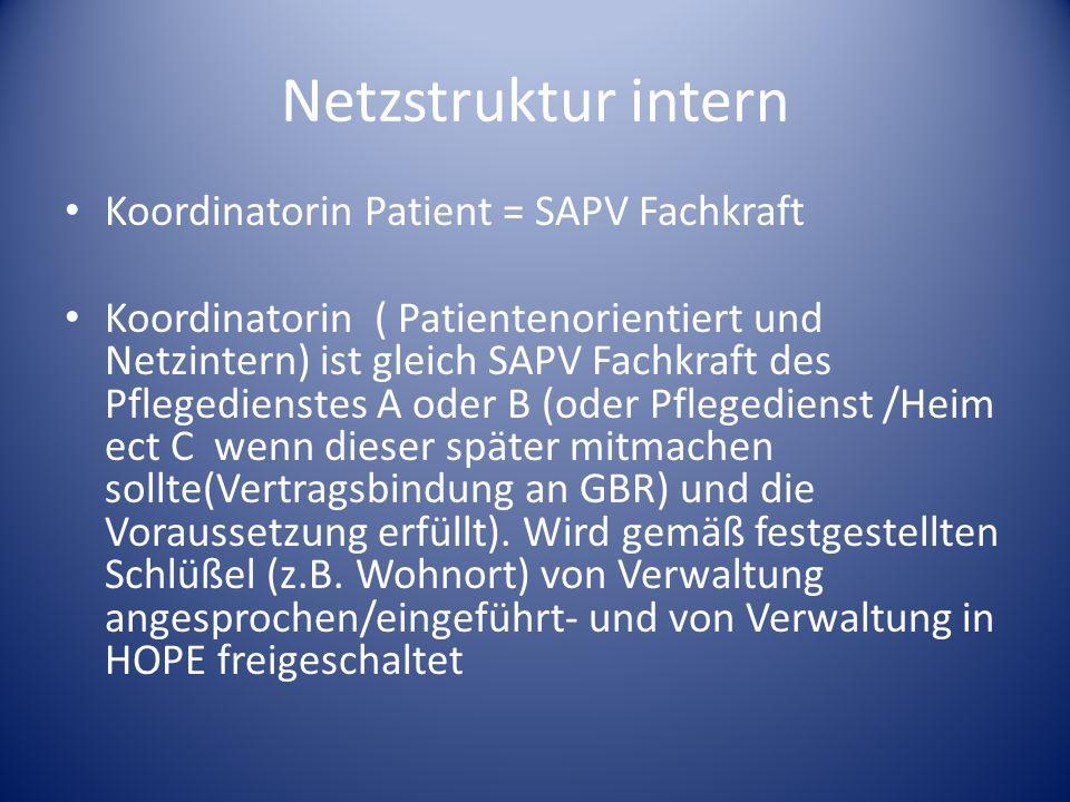 Netzstruktur intern Koordinatorin Patient = SAPV Fachkraft