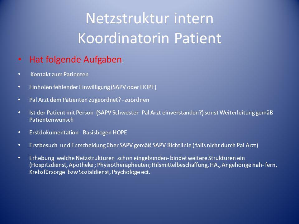 Netzstruktur intern Koordinatorin Patient