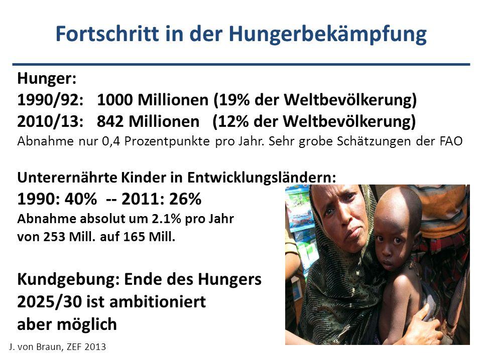 Fortschritt in der Hungerbekämpfung