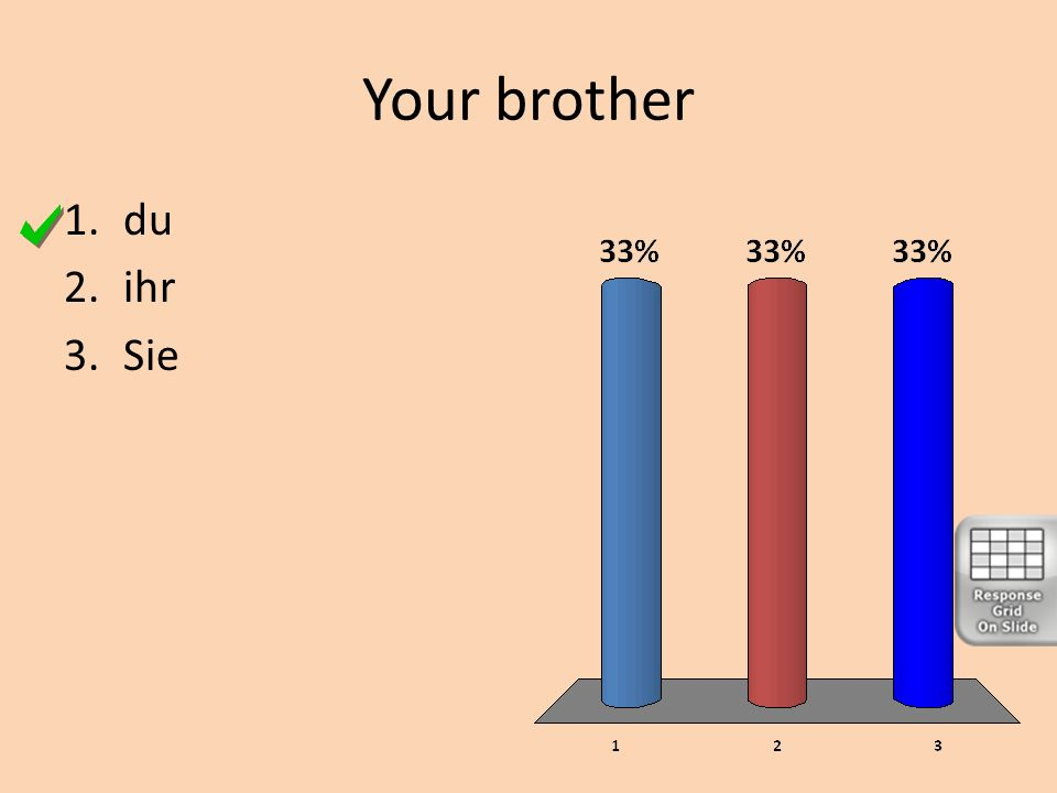 Your brother du ihr Sie
