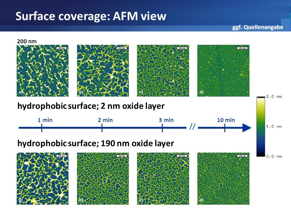 Surface coverage: AFM view