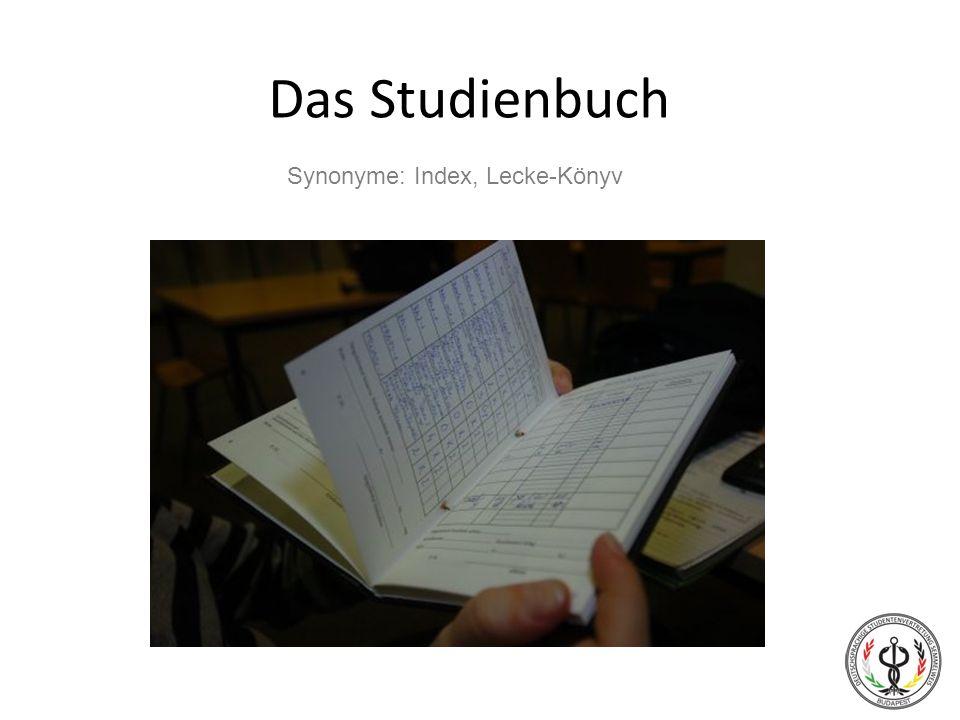 Das Studienbuch Synonyme: Index, Lecke-Könyv