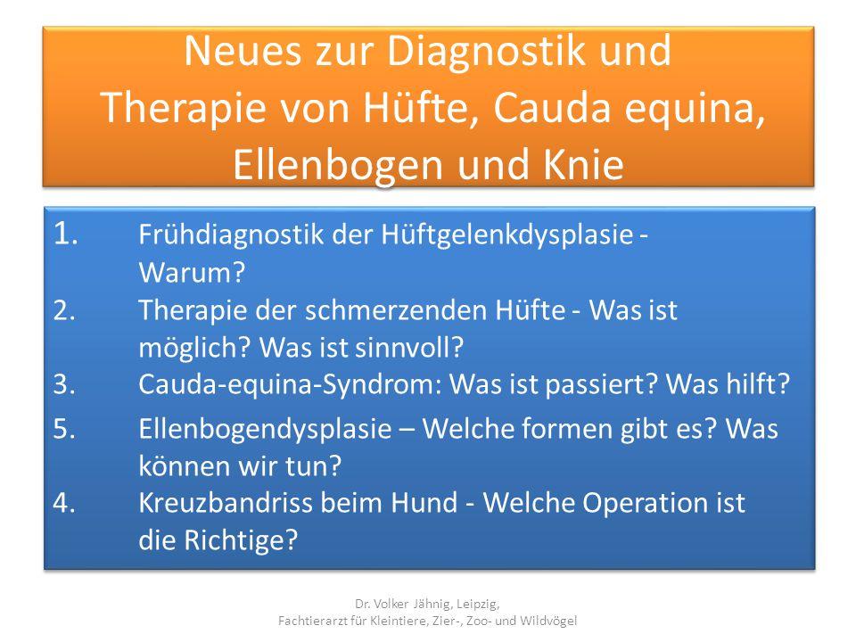Neues zur Diagnostik und Therapie von Hüfte, Cauda equina, Ellenbogen und Knie