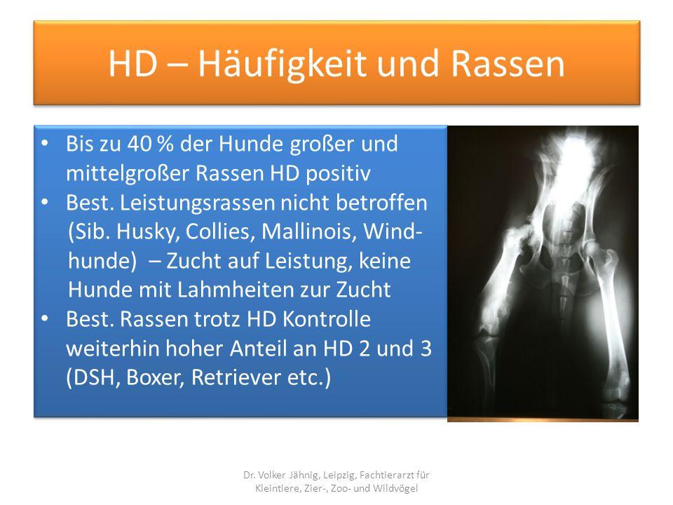 HD – Häufigkeit und Rassen