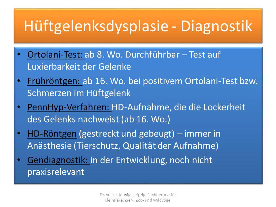 Hüftgelenksdysplasie - Diagnostik