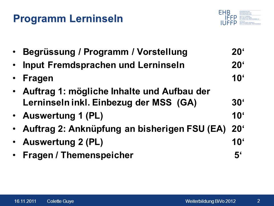 Programm Lerninseln Begrüssung / Programm / Vorstellung 20'