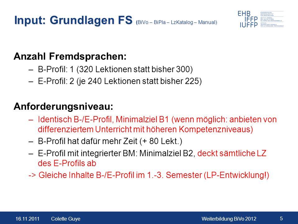 Input: Grundlagen FS (BiVo – BiPla – LzKatalog – Manual)