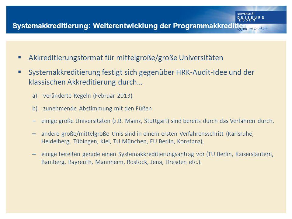 Akkreditierungsformat für mittelgroße/große Universitäten