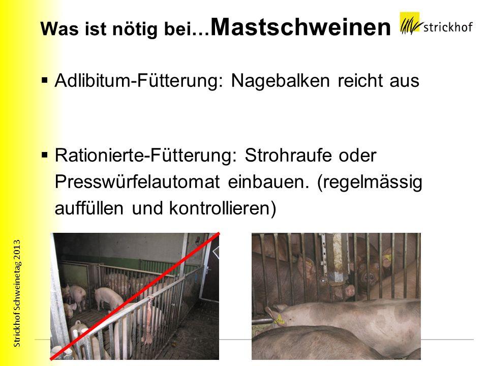 Was ist nötig bei…Mastschweinen