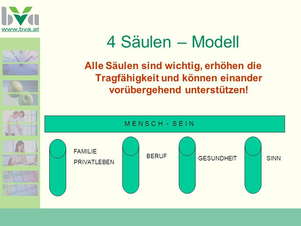 4 Säulen – Modell Alle Säulen sind wichtig, erhöhen die Tragfähigkeit und können einander vorübergehend unterstützen!