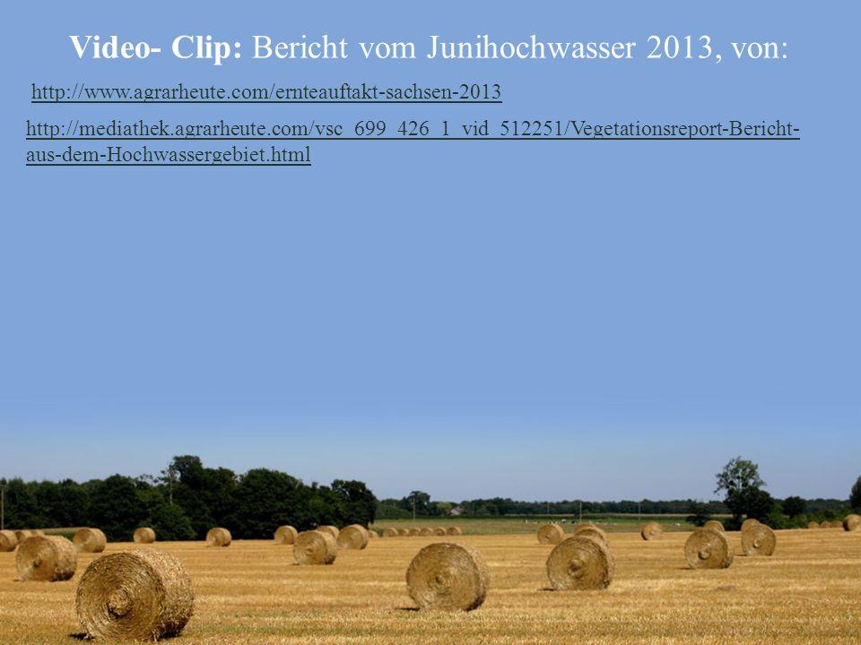 Video- Clip: Bericht vom Junihochwasser 2013, von: