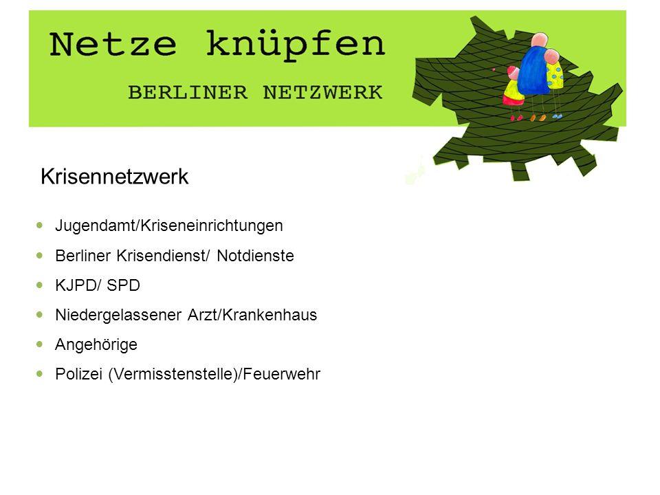 Krisennetzwerk Jugendamt/Kriseneinrichtungen