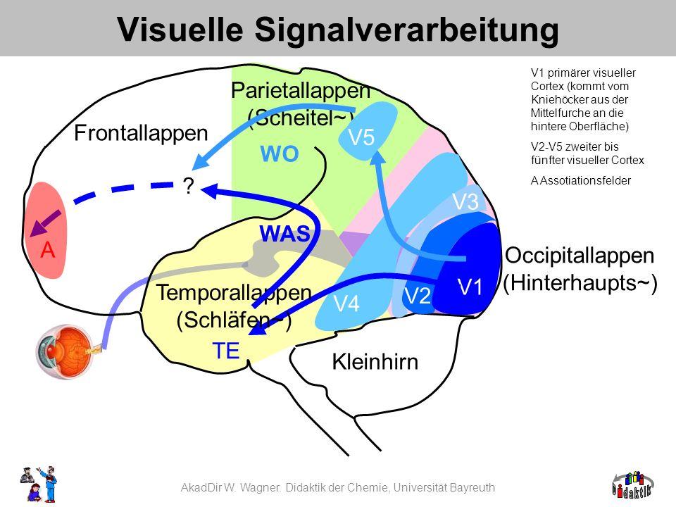 Visuelle Signalverarbeitung