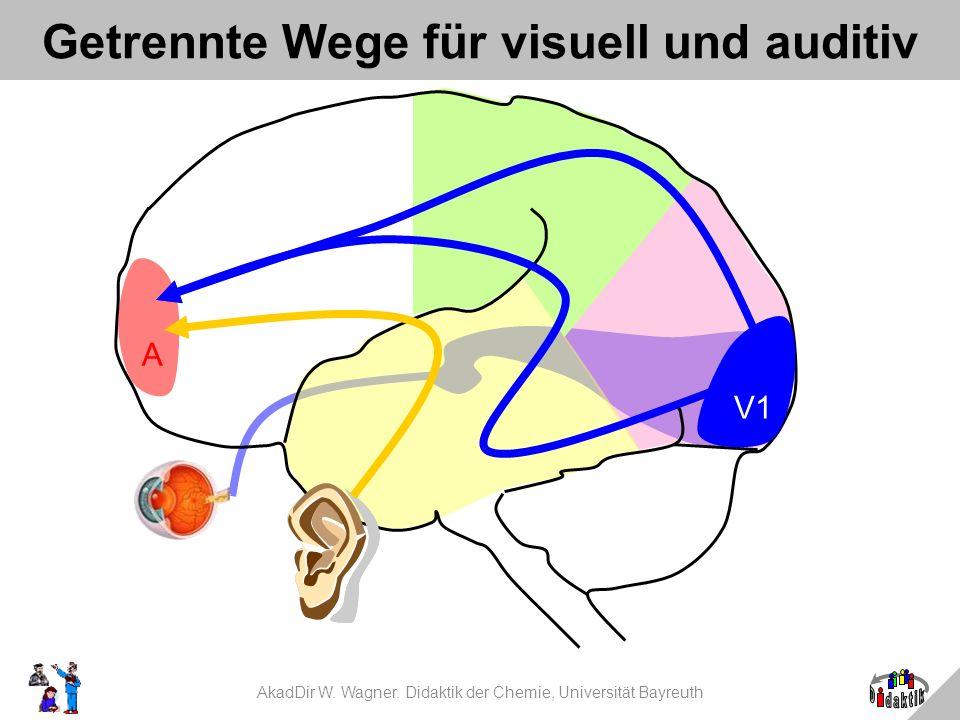 Getrennte Wege für visuell und auditiv