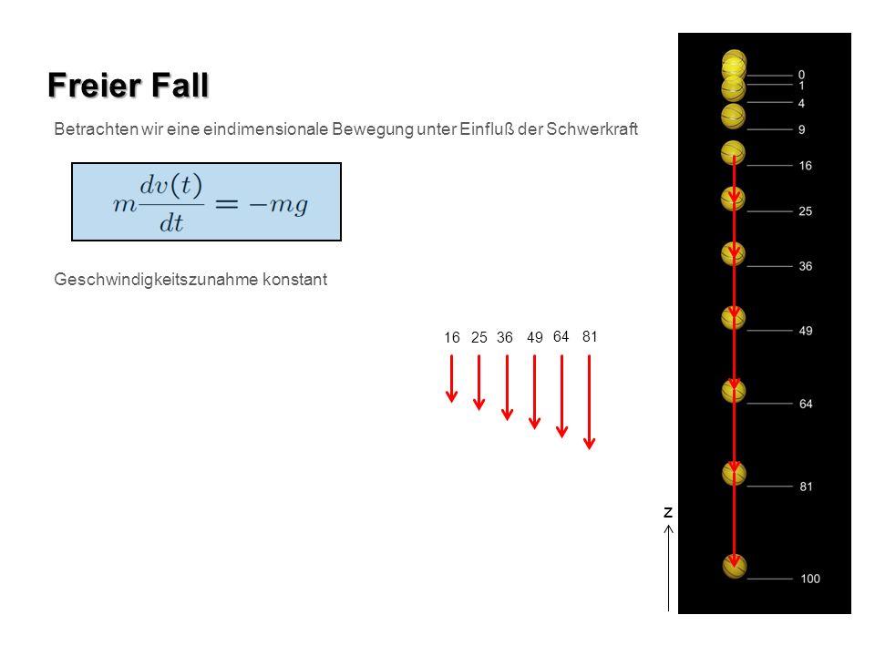 Freier Fall Betrachten wir eine eindimensionale Bewegung unter Einfluß der Schwerkraft. Geschwindigkeitszunahme konstant.