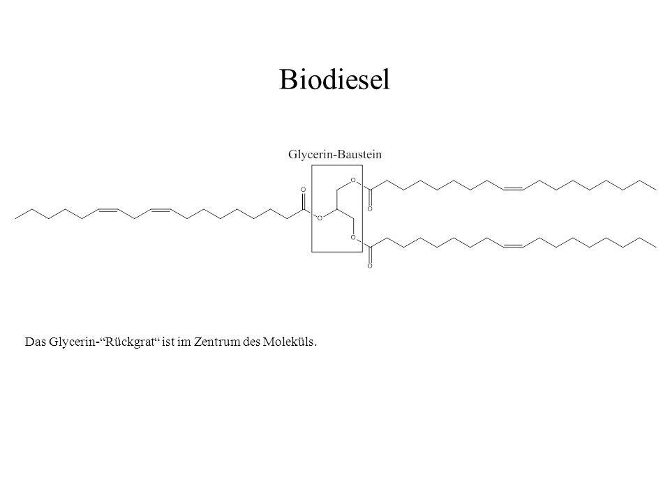 Biodiesel Das Glycerin- Rückgrat ist im Zentrum des Moleküls.