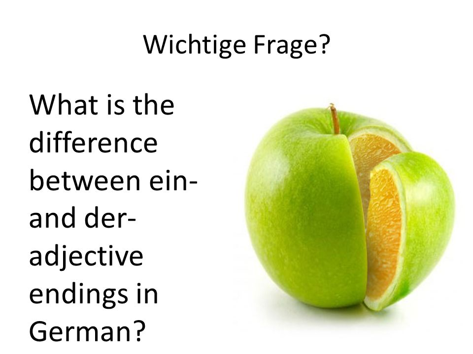 Wichtige Frage What is the difference between ein- and der- adjective endings in German