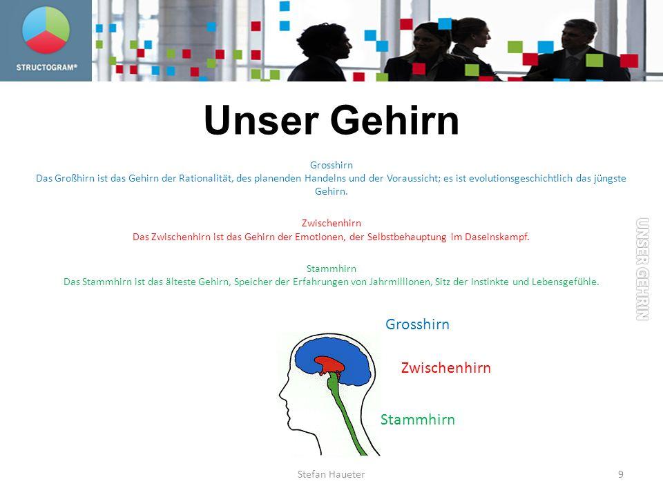 Unser Gehirn UNSER GEHRIN Grosshirn Zwischenhirn Stammhirn