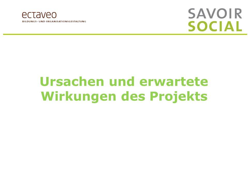 Ursachen und erwartete Wirkungen des Projekts
