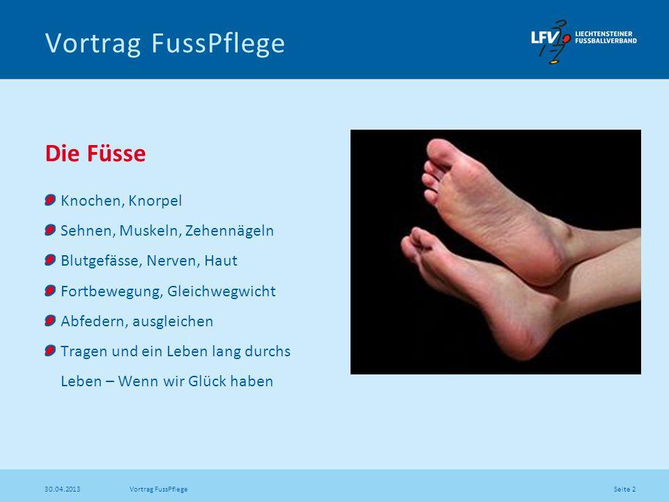 Vortrag FussPflege Die Füsse Knochen, Knorpel