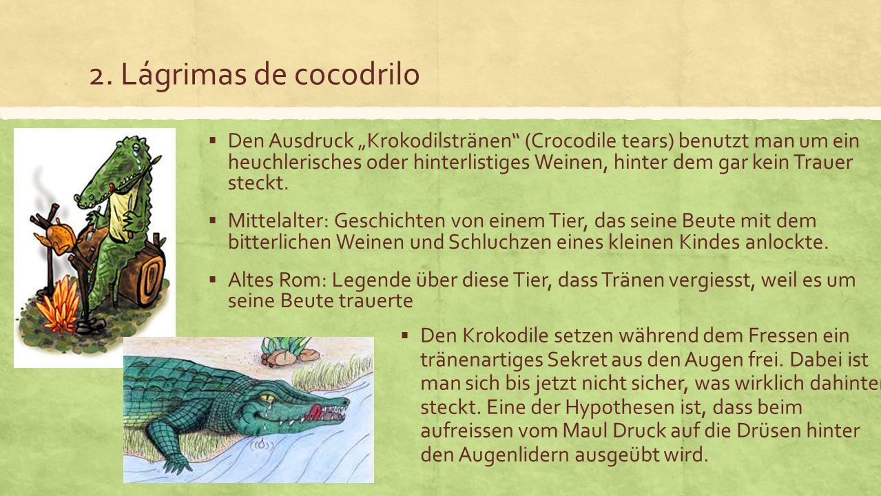 2. Lágrimas de cocodrilo