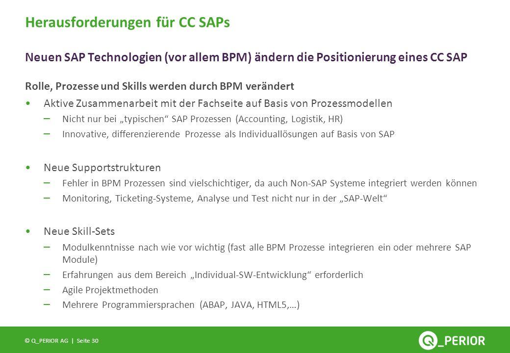 Herausforderungen für CC SAPs