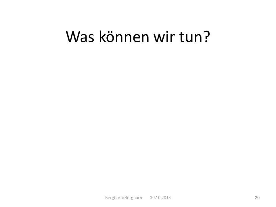 Was können wir tun Berghorn/Berghorn 30.10.2013 20