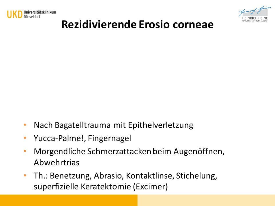 Rezidivierende Erosio corneae