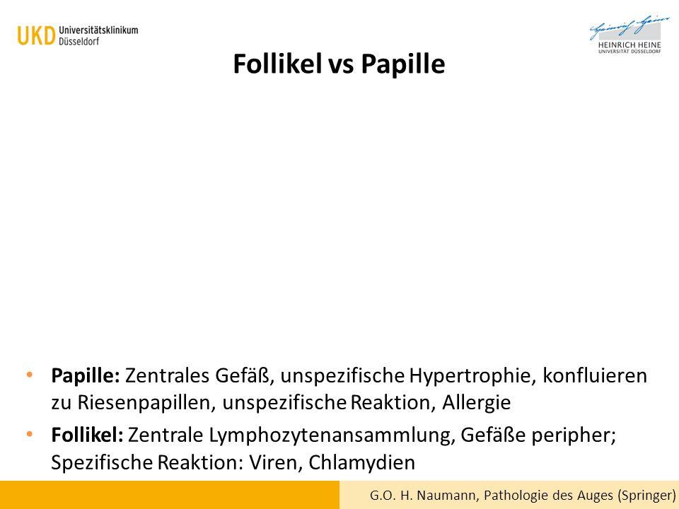 Follikel vs Papille Papille: Zentrales Gefäß, unspezifische Hypertrophie, konfluieren zu Riesenpapillen, unspezifische Reaktion, Allergie.