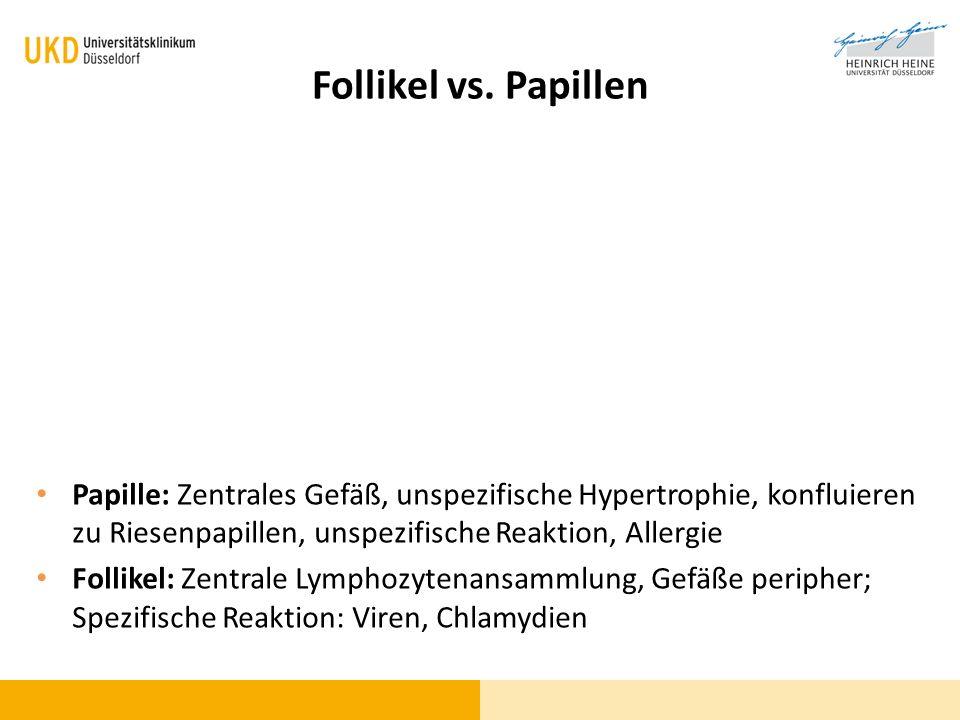 Follikel vs. Papillen Papille: Zentrales Gefäß, unspezifische Hypertrophie, konfluieren zu Riesenpapillen, unspezifische Reaktion, Allergie.