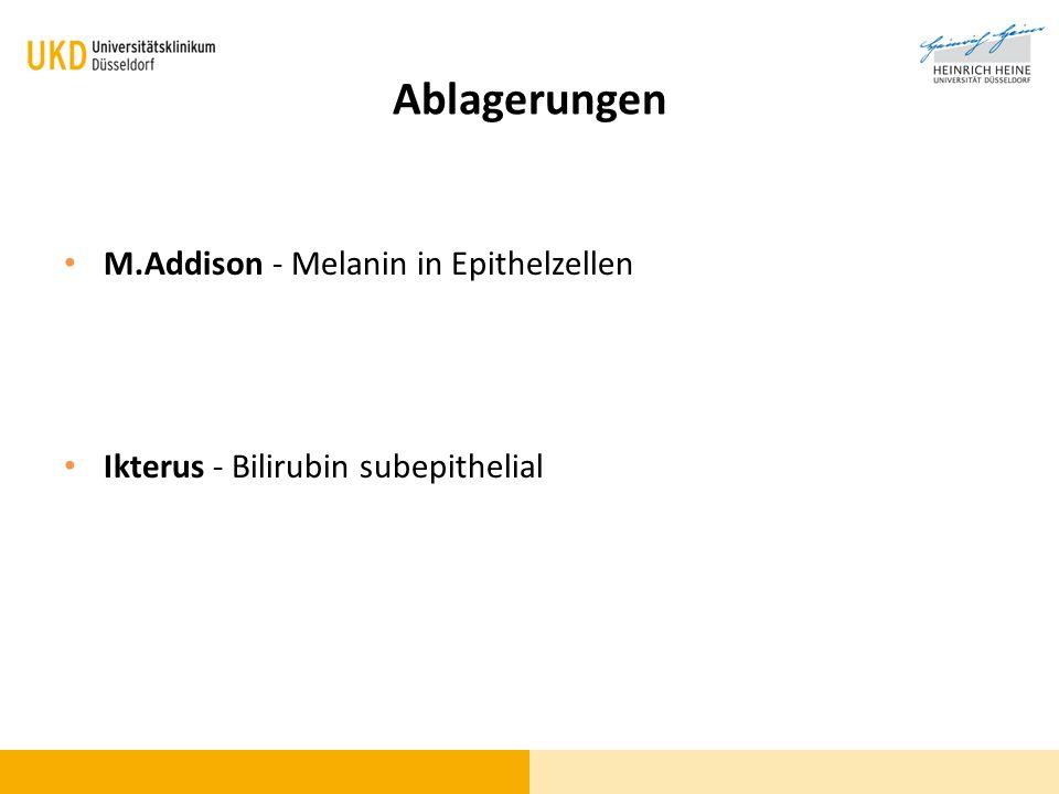 Ablagerungen M.Addison - Melanin in Epithelzellen