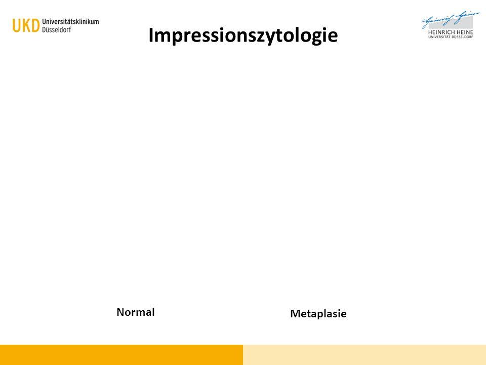 Impressionszytologie