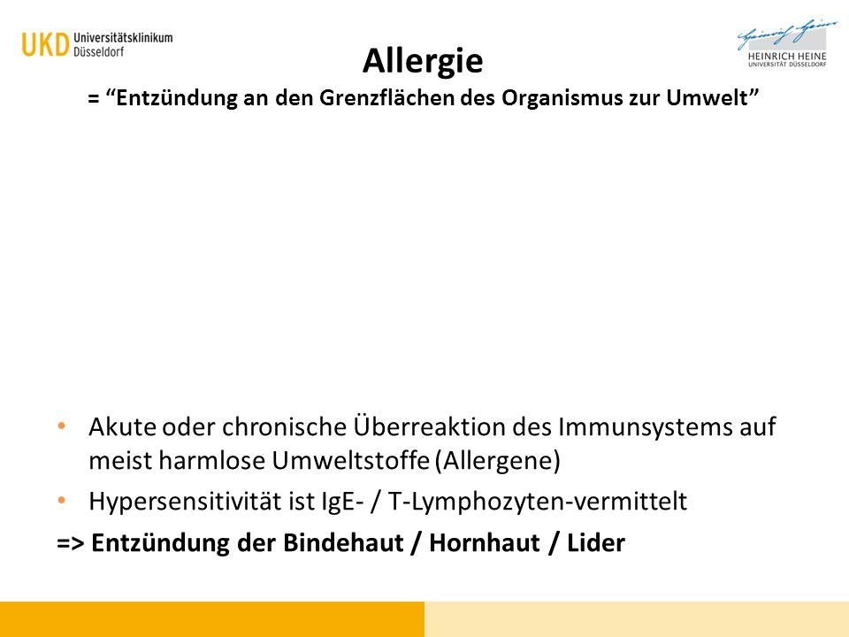 Allergie = Entzündung an den Grenzflächen des Organismus zur Umwelt